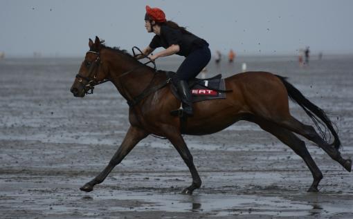 2014-07 Pferderennen im Watt bei Cuxhaven3
